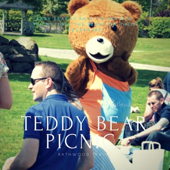 Teddy Bear picnic 2017