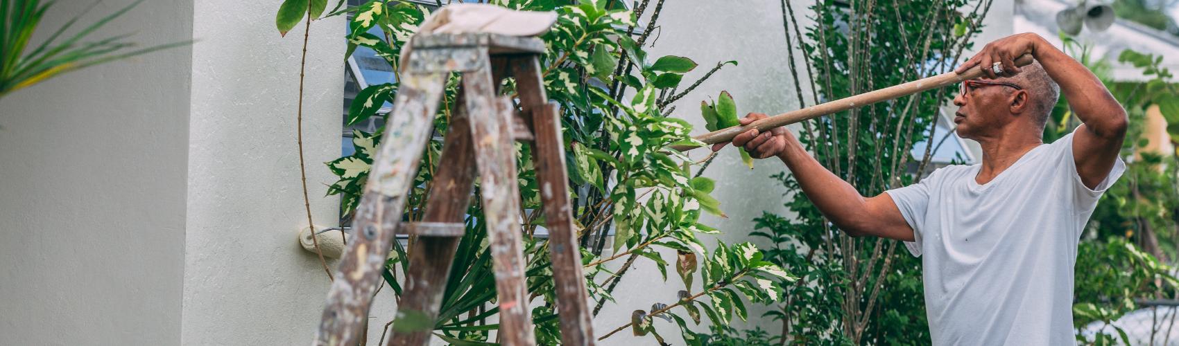 Simple Garden Ideas that can transform your garden