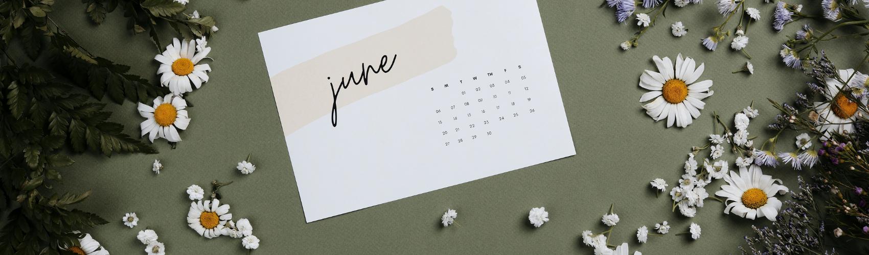 Gardening activities to do in the month of June
